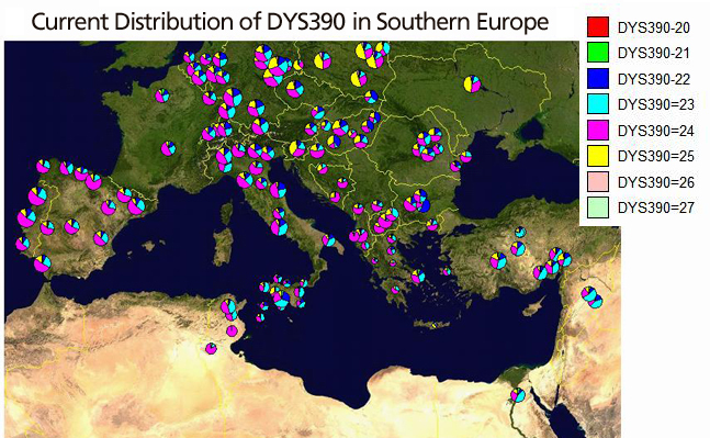 DYS390 distribution in Southern Europe